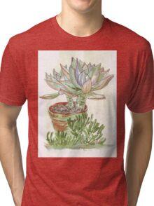 "Graptoveria ""Fred Ives"" Tri-blend T-Shirt"