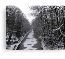 Frozen Canal scene Canvas Print