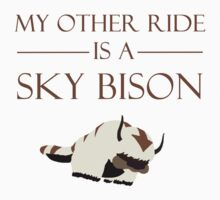 My Other Ride is a Sky Bison by Percabeth24