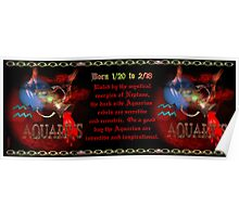 Valxart Gothic Aquarius zodiac astrology  Born 1/20 to 2/18 Poster