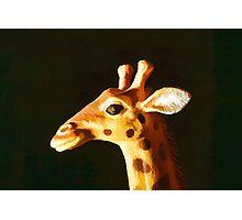 Giraffe 1 Photographic Print