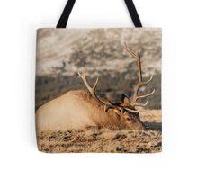 Bull Elk Napping Tote Bag