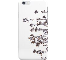 Plant in Winter iPhone Case/Skin