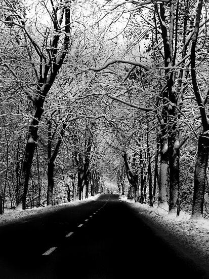 Beauty of winter by ulryka