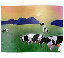 Cows in summer mist Poster