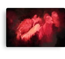 Autumn Rouge    (GO) Canvas Print