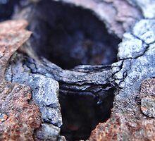 Rusty n Crusty by vigor