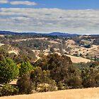 Adelaide Hills - Summer in Australia by DPalmer