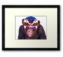 lucha monkey 2 Framed Print