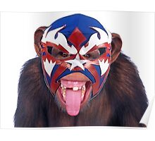 lucha monkey 2 Poster