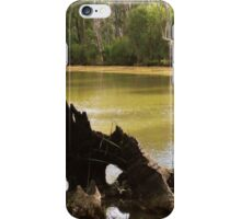 Old Stumpy by Lorraine McCarthy iPhone Case/Skin