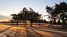 Sunrise at Springdale by Greg Belfrage