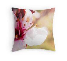 Macro Bradford Pear Blossom Throw Pillow