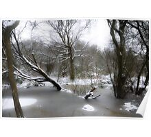 Brittons Pond in Snow Poster
