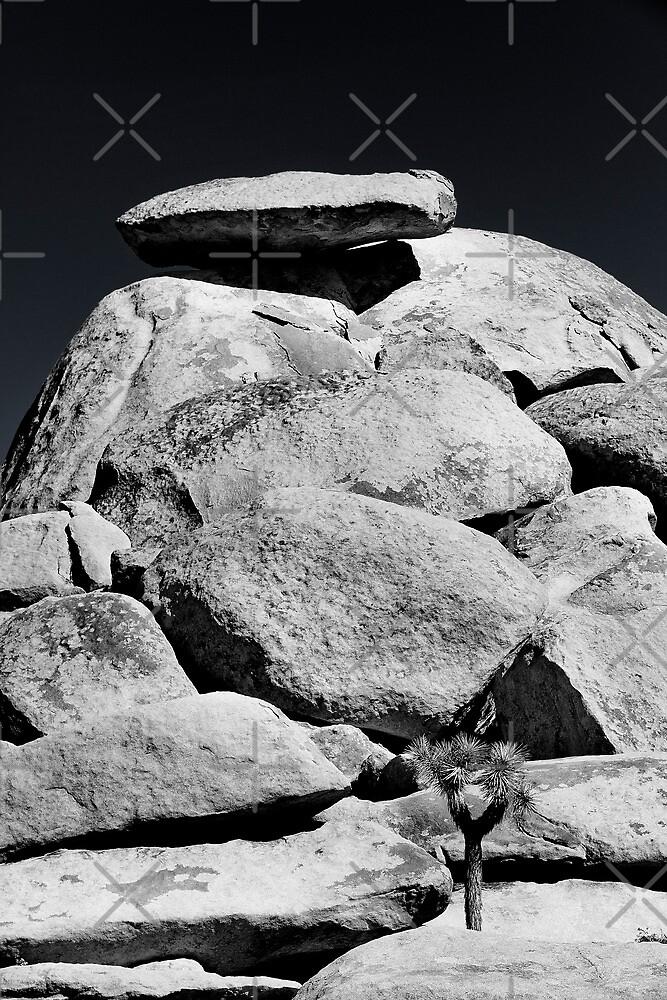 Cap Rock 2 by Alex Preiss