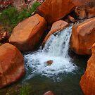 Grand Canyon side stream by LichenRockArts
