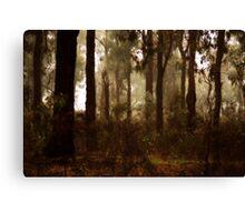 Whipstick Bush in Winter by Lorraine McCarthy Canvas Print