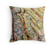 Colorful lichen, Maine coast Throw Pillow
