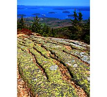 brilliant Bar Harbor, Maine coast with lichen Photographic Print