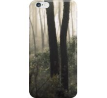 Pretty as a Picture By Lorraine McCarthy iPhone Case/Skin