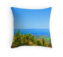 Bright Maine coast Throw Pillow