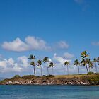 Kapalua Beach, Maui, Hawaii by Barb White