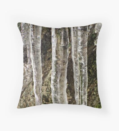 Icey Cold Throw Pillow