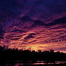 Ebb Tide Horizon by Vince Scaglione