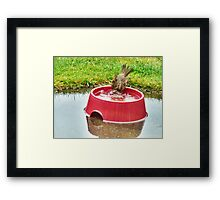 Wash Your Face In My Sink Framed Print