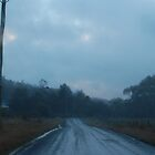 Dirt road on a stormy day by Cameron Hicks