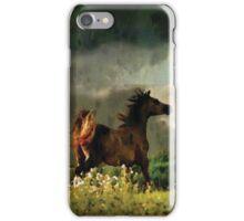 Wild Horse Challenges Wild Storm Phone Case iPhone Case/Skin