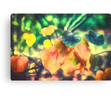 Autumn Leaves    (GO) Canvas Print