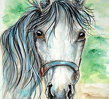Pretty Grey Horse by ApolloniaArt