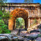 Lennox Bridge by Steve Randall