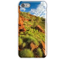 Sunkissed Spinifex iPhone Case/Skin