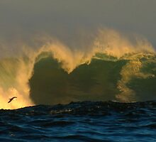 gliding through big surf by Alex Call