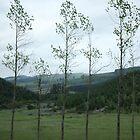 Woodwind Quintet by jeune-jaune