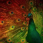 Emeralds On Fire.... by SharonJH
