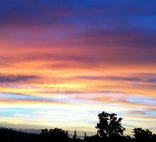 Sunset Magic by bidya