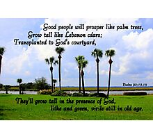 Psalms 92:13-14 Photographic Print