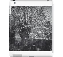 Ghost in the willow iPad Case/Skin