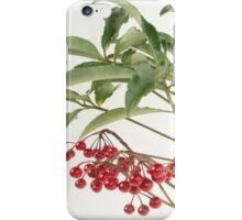 Spice Berry iPhone Case/Skin