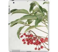 Spice Berry iPad Case/Skin
