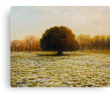 In Anticipation of The Spring Canvas Print