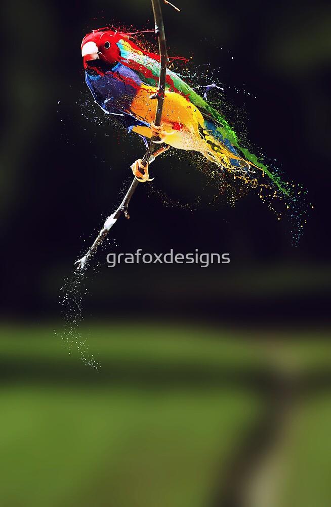 Pintura by grafoxdesigns