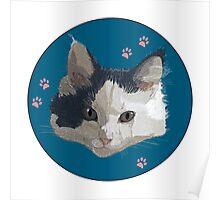 Migi the Kitten Poster
