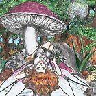 Mushroom Fairy by David Webb