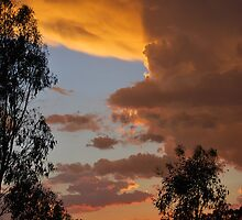 Summer Sunset by bidya