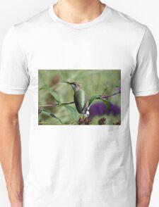 Singing Hummingbird T-Shirt