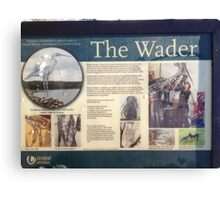 The Wader info Canvas Print
